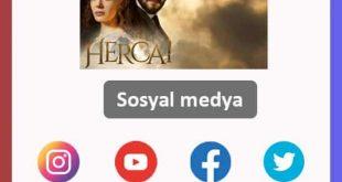 Hercai 66